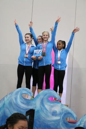 WISC gymnasts (file photo)