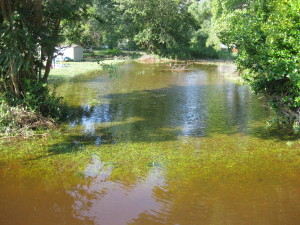 Rain causes frequent flooding in the neighborhood. (Courtesy James City County)