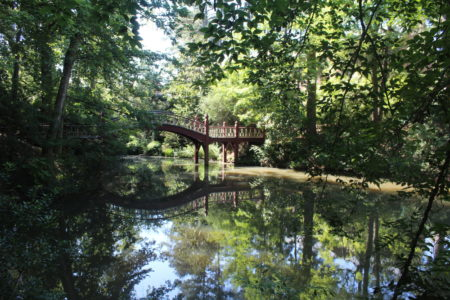 The Crim Dell is a man-made pond near the College of William & Mary's Sadler Center. (Ian Brickey/WYDaily)