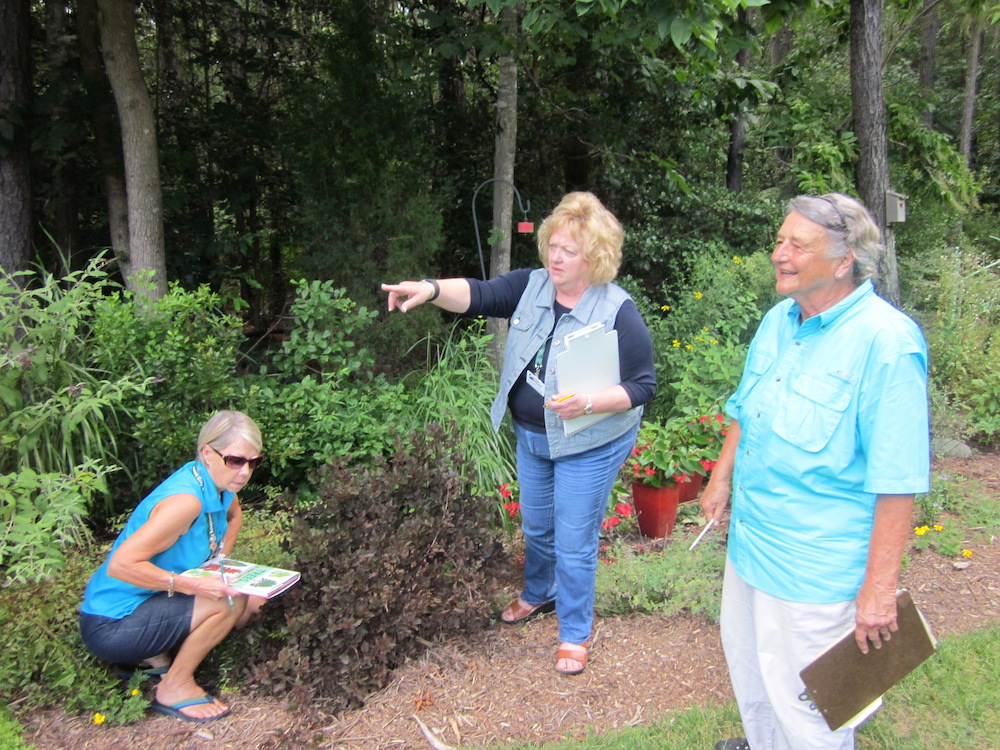 Master gardeners to offer free at home landscaping for Local landscape gardeners