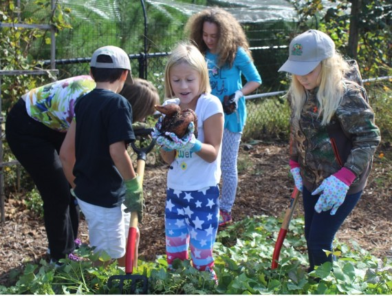 Blayton Students Seize Spuds, Try Squash During Farm-to-School Kickoff