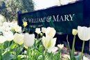 William & Mary Sign