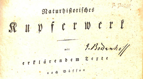 """Title page of Ferdinand Seidel's """"Natural History in copper plates, with explanatory text following Buffon."""" (Courtesy of W&M Libraries)"""
