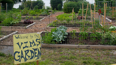 One of the grants will enable reconstruction of the beds in the community garden at W&M's Virginia Institute of Marine Science. (Courtesy VIMS)