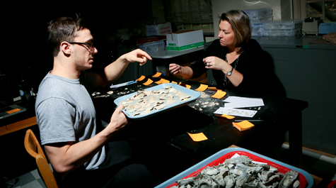 Joshua Zimmt '17 helps paleontologist Rowan Lockwood sort through the many, many shell fossils recovered from ancient oyster reefs. Lockwood presented ideas for re-oystering the Chesapeake based on conservation paleontology principles. (Stephen Salpukas/W&M News)