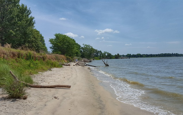 Seven miles of shoreline are featured at Belle Isle State Park. Photo courtesy Virginia State Parks