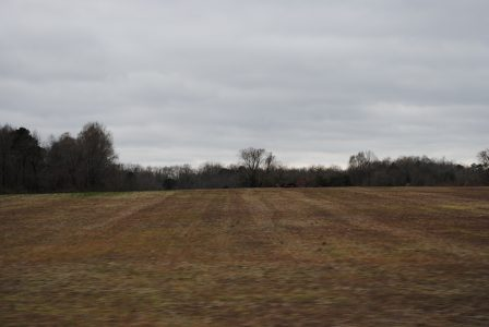 The Taylor family says they have no immediate plans to develop the land, but family members have written letters stating keeping the property as farmland forever will not be sustainable. (Sarah Fearing/WYDaily)