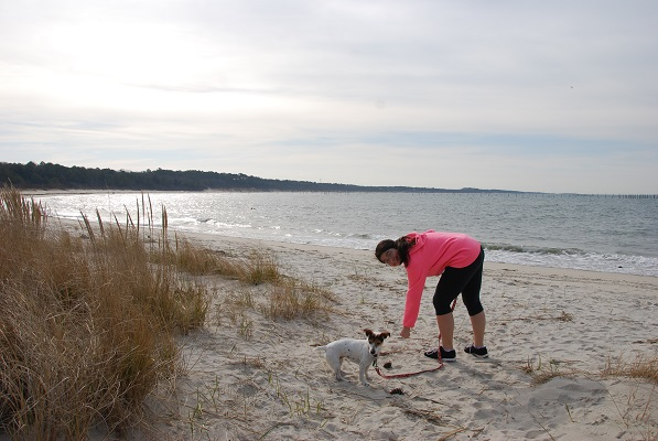 There is a open beach that allows dogs and a designated swimming beach at Kiptopeke State Park. Photo courtesy Virginia State Parks