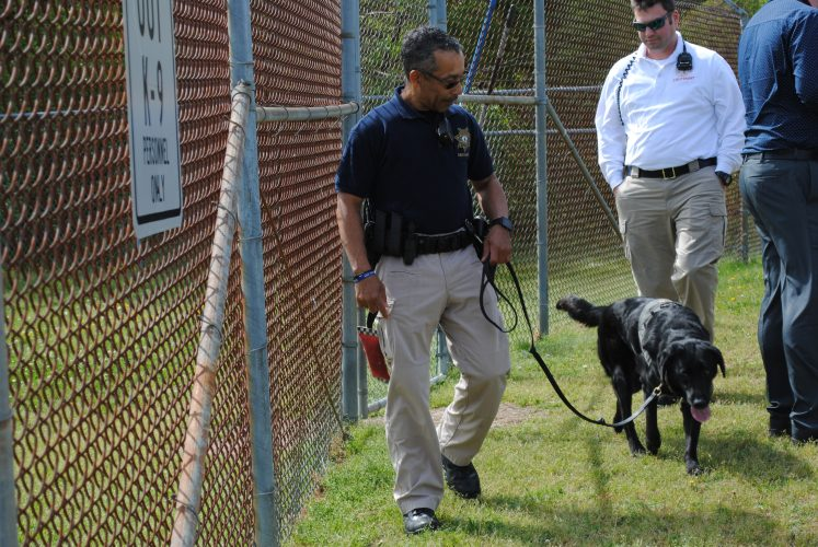Fire Marshal Jesse Gomes walks accelerant detection K9 Taylor Tuesday morning during training. (Sarah Fearing/WYDaily)