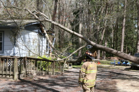 Fire crews in the Historic Triangle responded to several downed trees Thursday. (Courtesy of James City County)