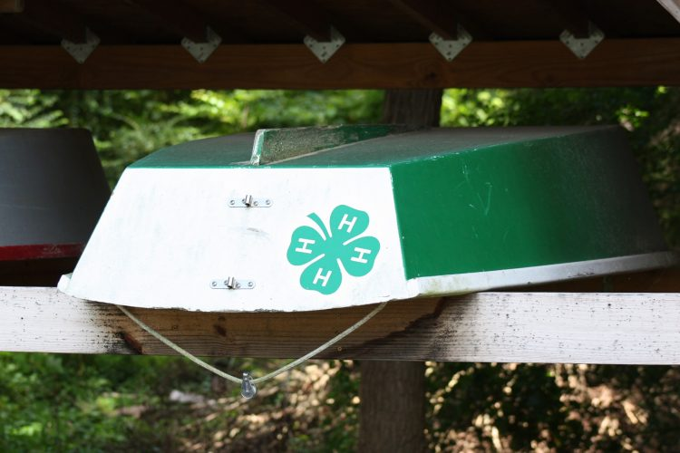 York-Poquoson 4-H is now asking for community input. (WYDaily/ Courtesy of York-Poquoson 4-H's Facebook page)